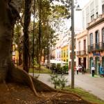 In het centrum van Santa Cruz de Tenerife
