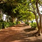 Park in San Sebastián de la Gomera