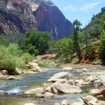 Rivier in Zion National Par