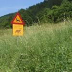 Langs de kant van de weg stonden borden die waarschuwden voor beren