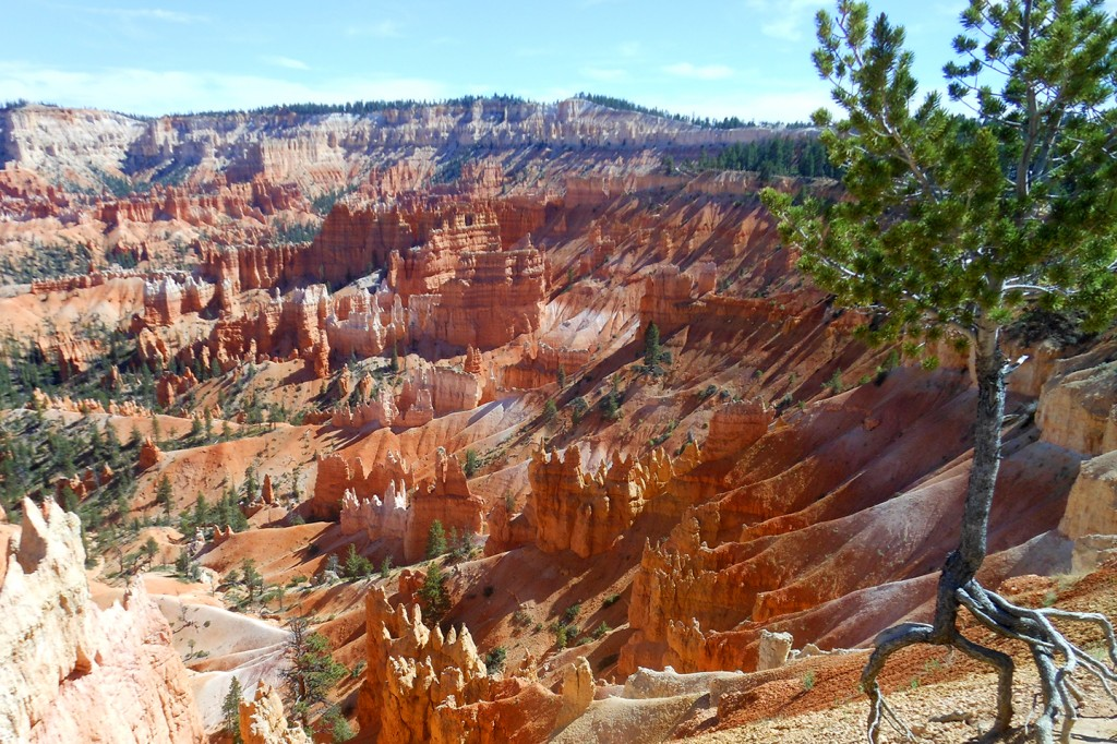 Aardpiramides in Bryce Canyon National Park