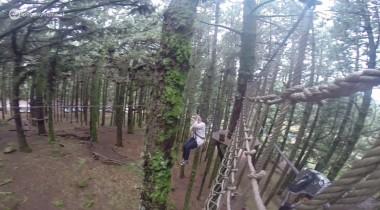 Forestal Park Tenerife