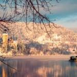 Maria Hemelvaartskerk en een pletna (overdekte gondel) in het meer van Bled, Slovenië