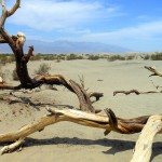 Enorme hitte in Death Valley