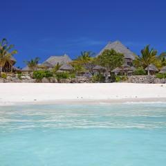 Strand met huisjes in Zanzibar